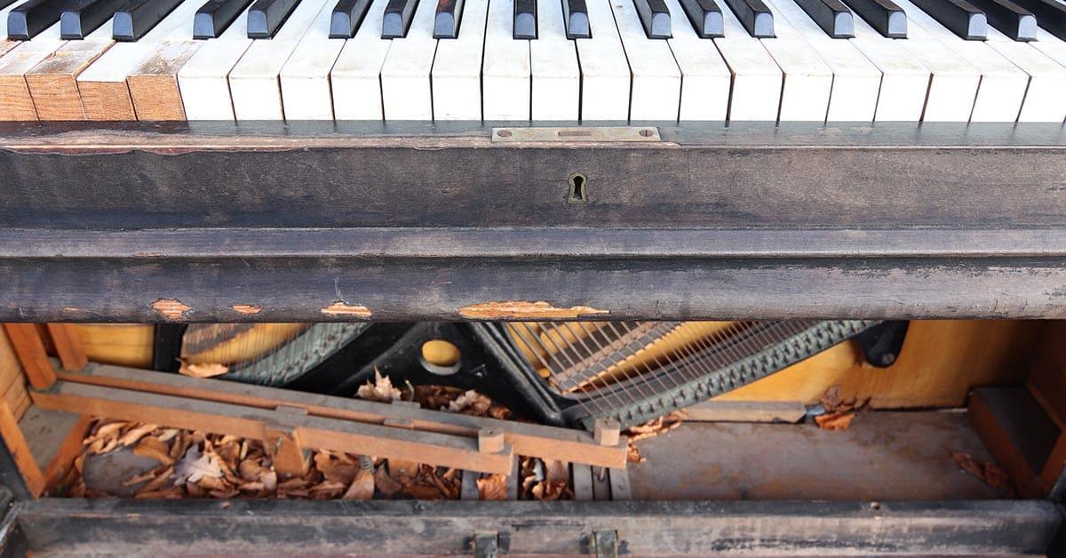 Castellón Pianos - Control de Humedad y Plagas